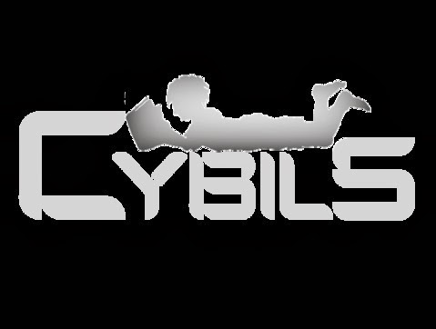 We dig the CYBILS