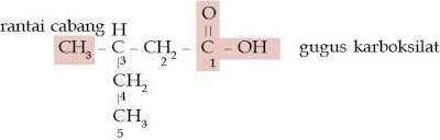 asam 3-metil-pentanoat