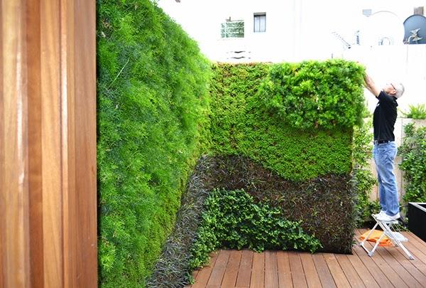 5 beneficios de los jardines verticales para la salud for Beneficios de los jardines verticales