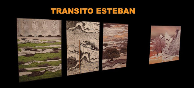 TRANSITO ESTEBAN