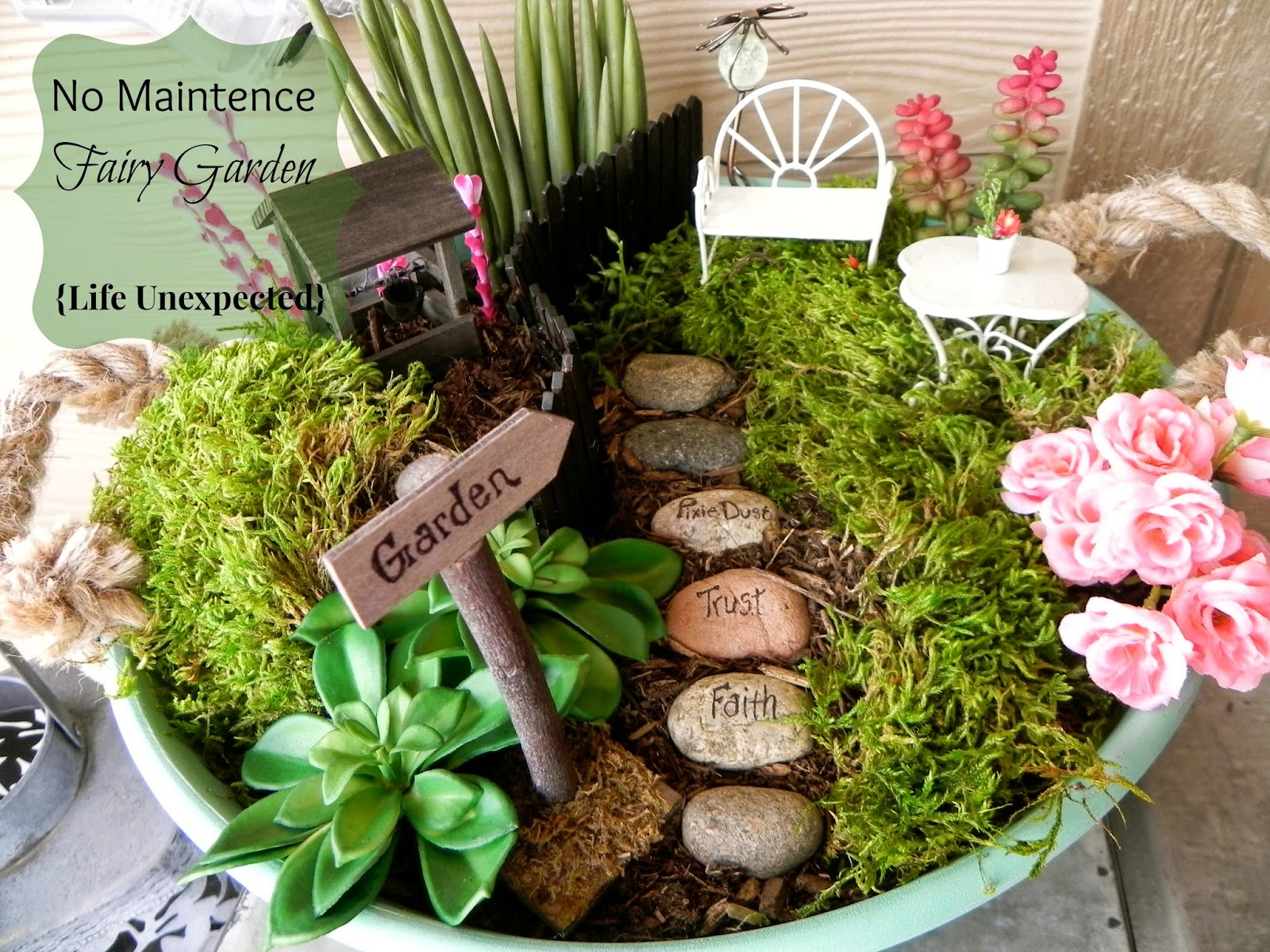 Life Unexpected No Maintenance Fairy Garden