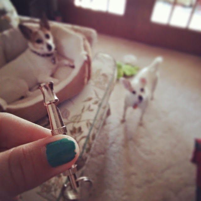 Ultrasonic Dog Training Whistle Review