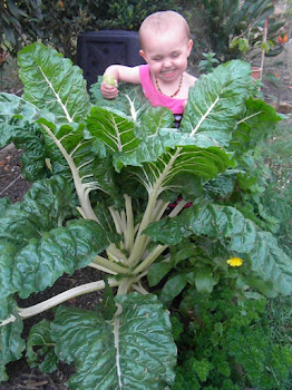 My Violet loves growing silverbeet