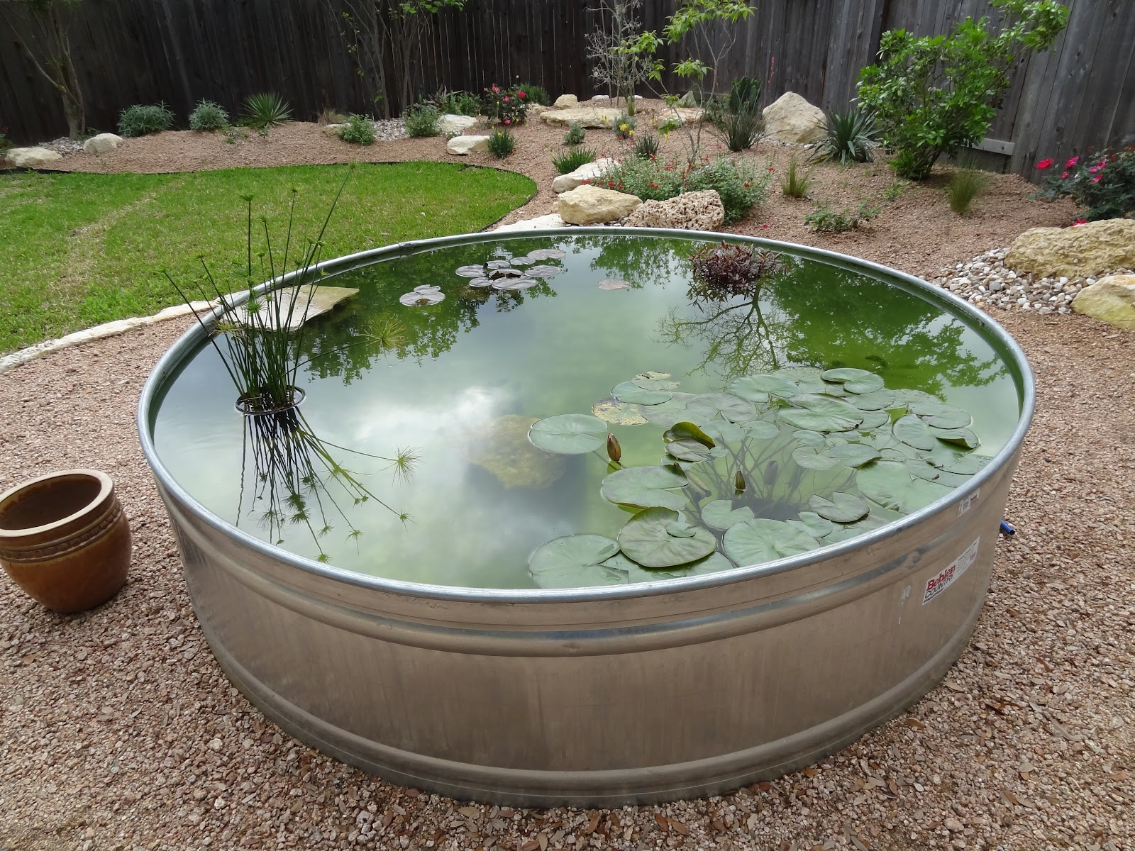New Stock Tank Pond