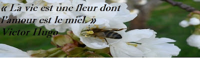 Proverbe connu sur la vie
