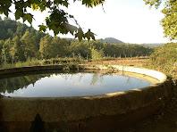 La bassa de Can Rogent