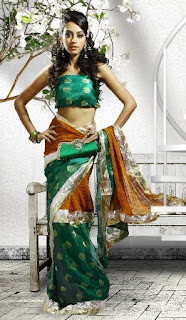 Georgette-Indian-Bollywood-Saree