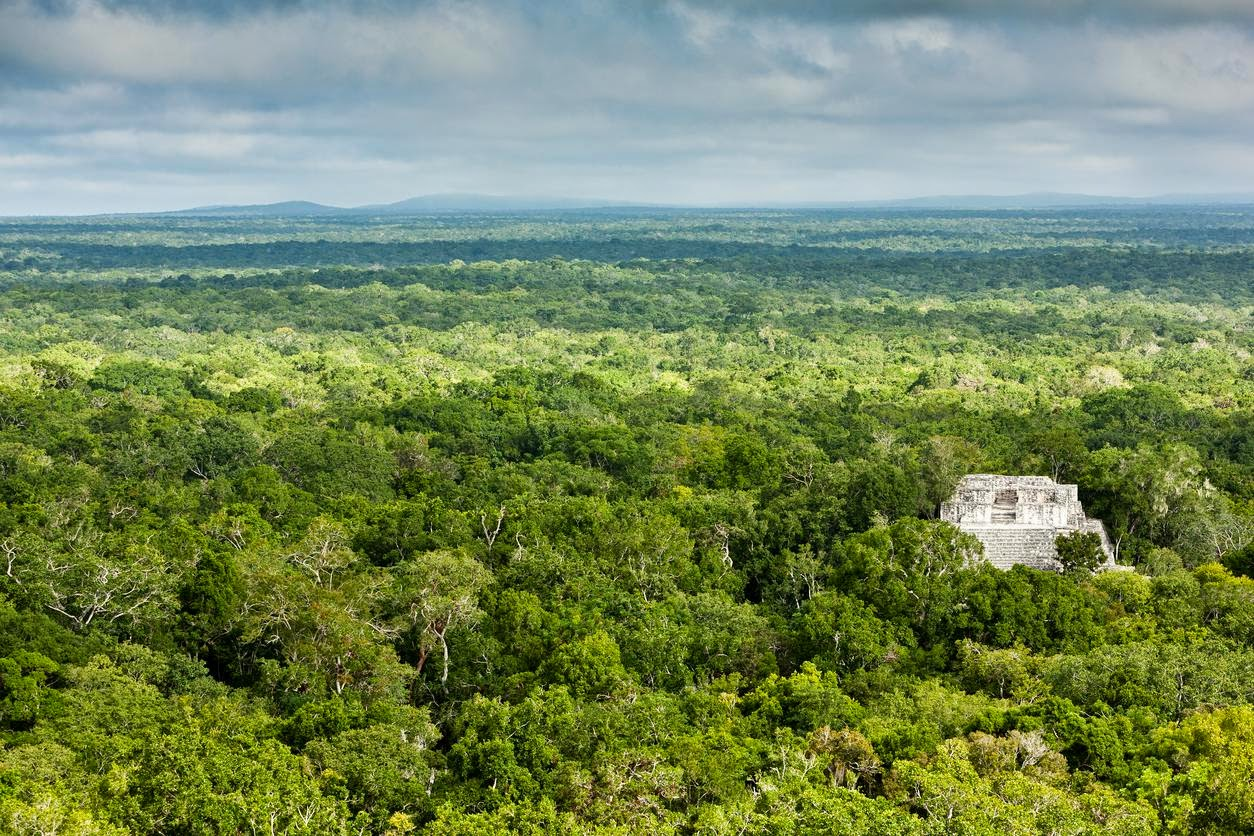 The ruins of Calakmul. Credit Joe Ray   A less-touristed ancient Maya city