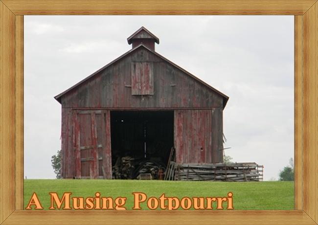 A Musing Potpourri
