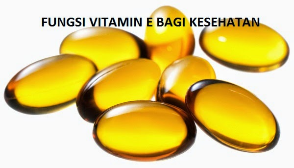 manfaat dan fungsi vitamin E bagi kesehatan