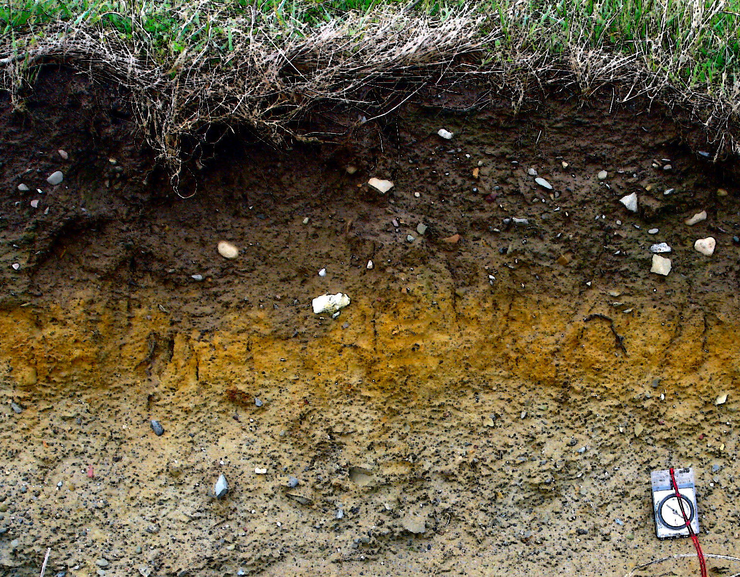 Organic soil components difference between topsoil for Soil environment