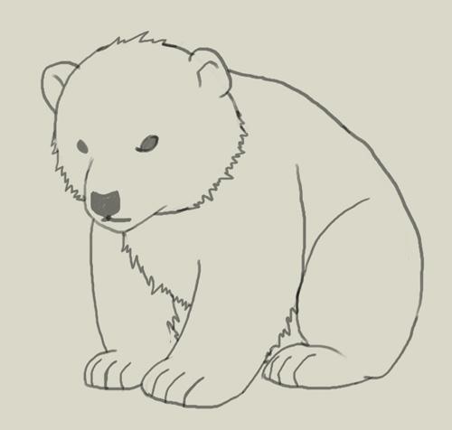 белый медведь рисунки