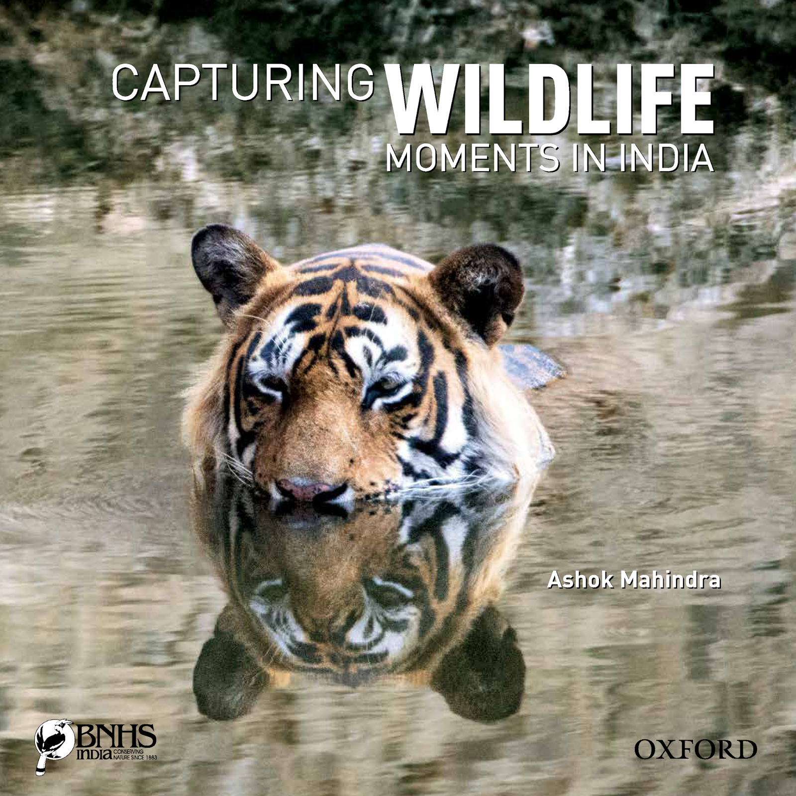 Capturing Wildlife Moments in India, Ashok Mahindra