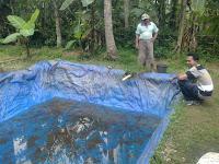 kolam terpal diatas tanah dan kolam terpal didalam tanah untuk kolam