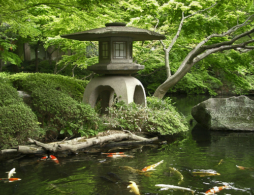 Calling it home a japanese garden for Japanese garden pond design