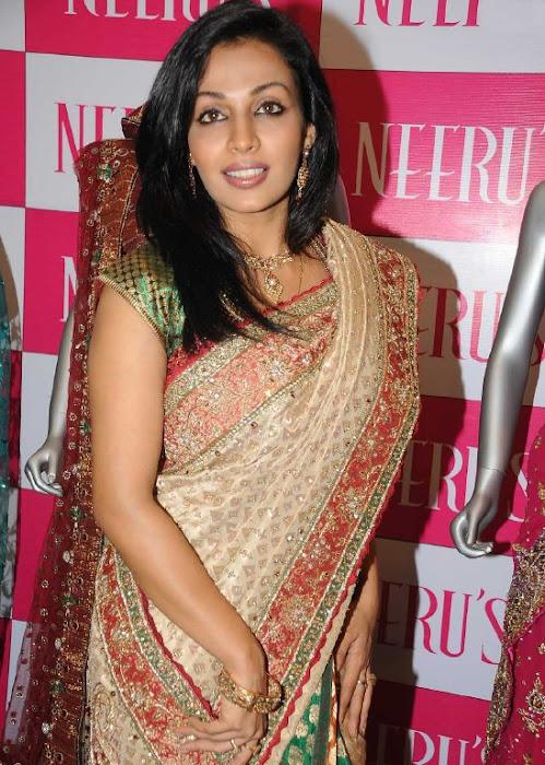 asha saini aka mayuri in silk saree hot photoshoot