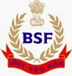 BSF logo image