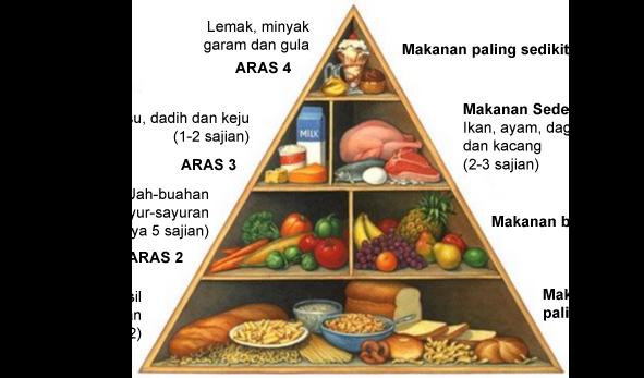 sumber makanan