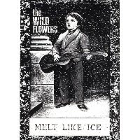 The Wild Flowers- Melt Like Ice & Things Have Changed 7\'\'