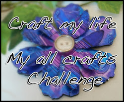 Elaine's All Crafts Challenge