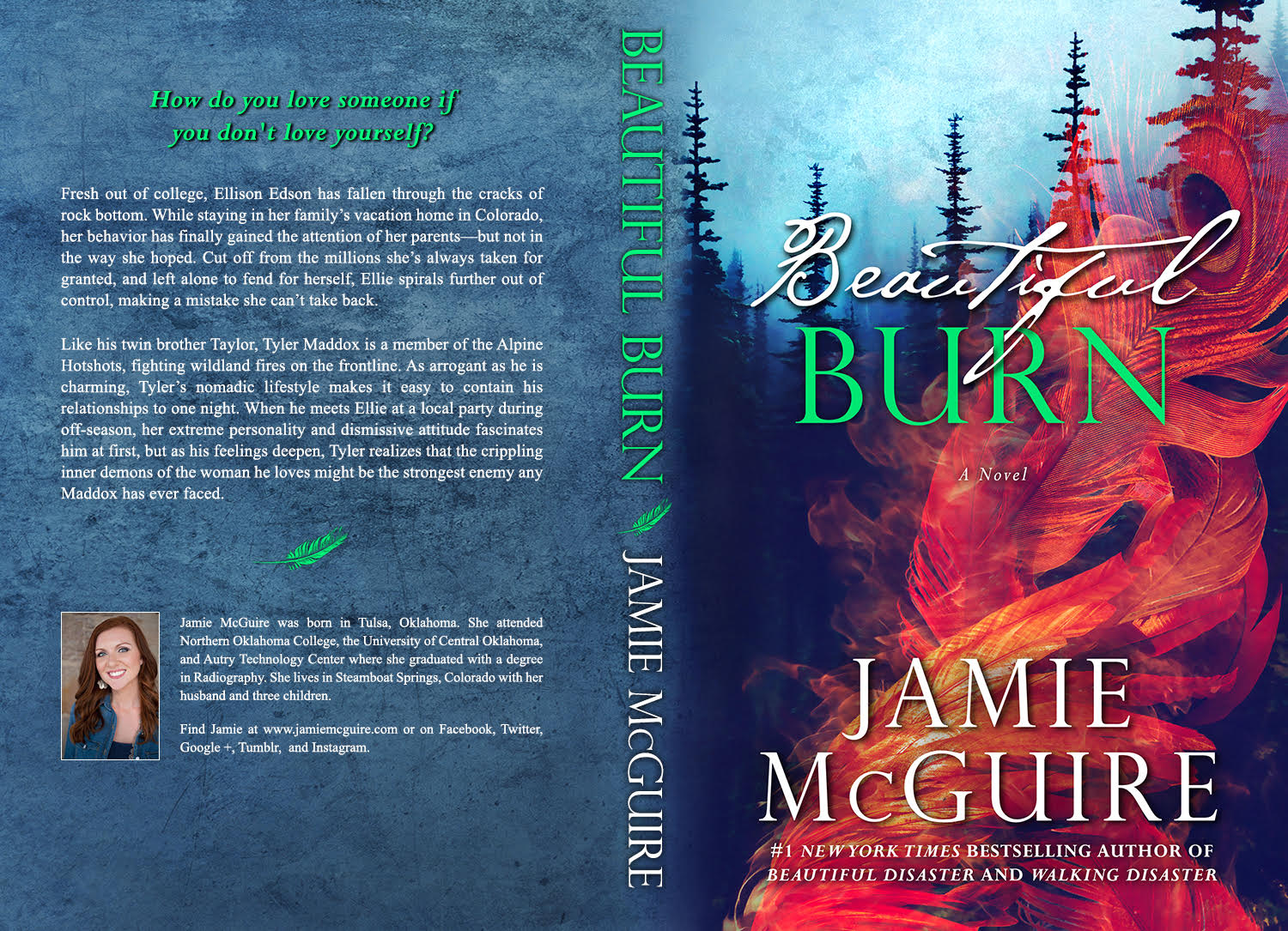 Beautiful Disaster Book Cover : Twilighters dream beautiful burn by jamie mcguire review