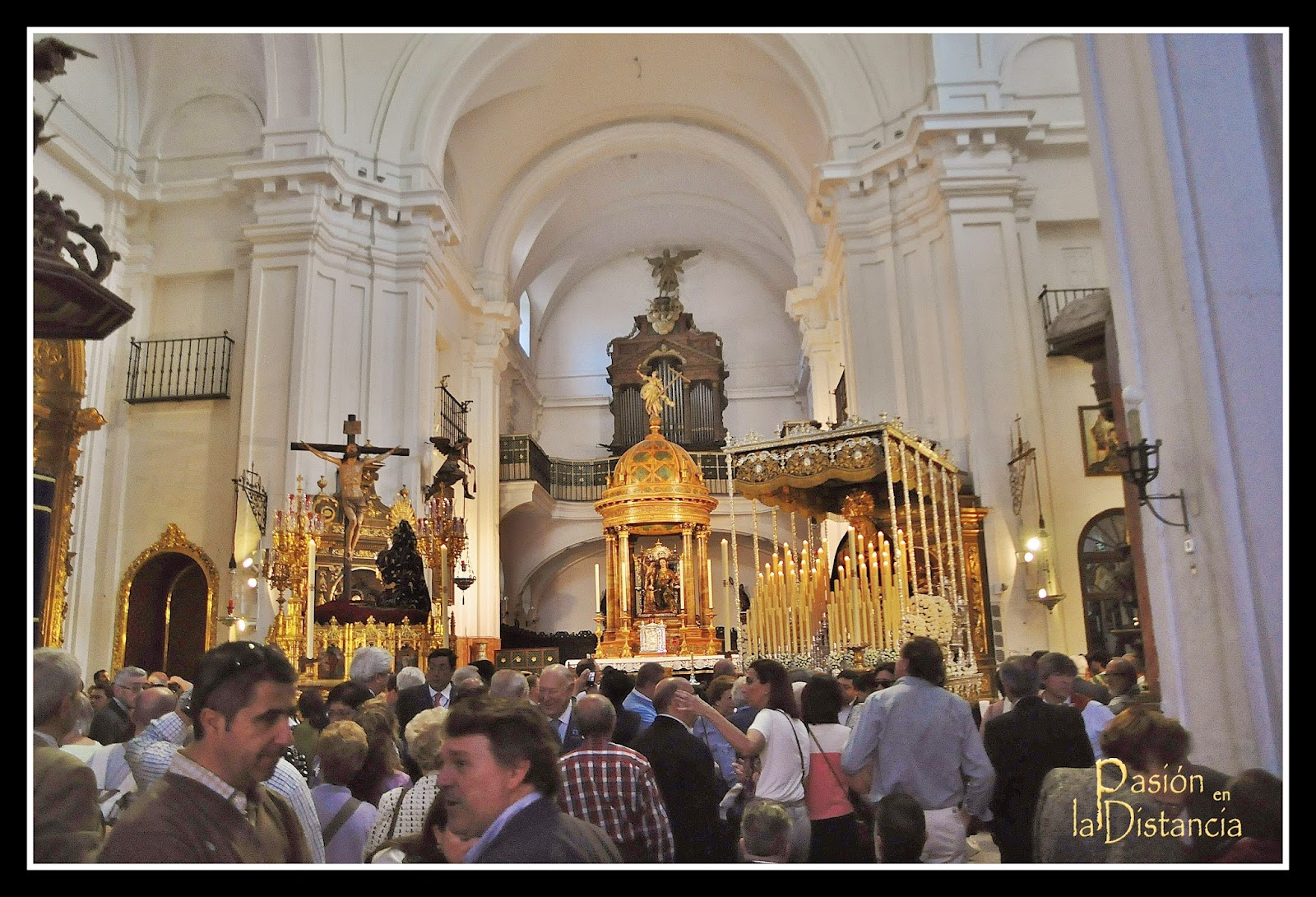 Hermandad de Santa Cruz 2014 Sevilla