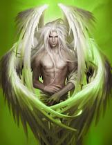 Male Wing Elf
