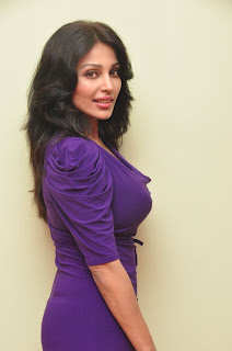 asha saini  Picture stills at sahasra sucess meet(20).jpg