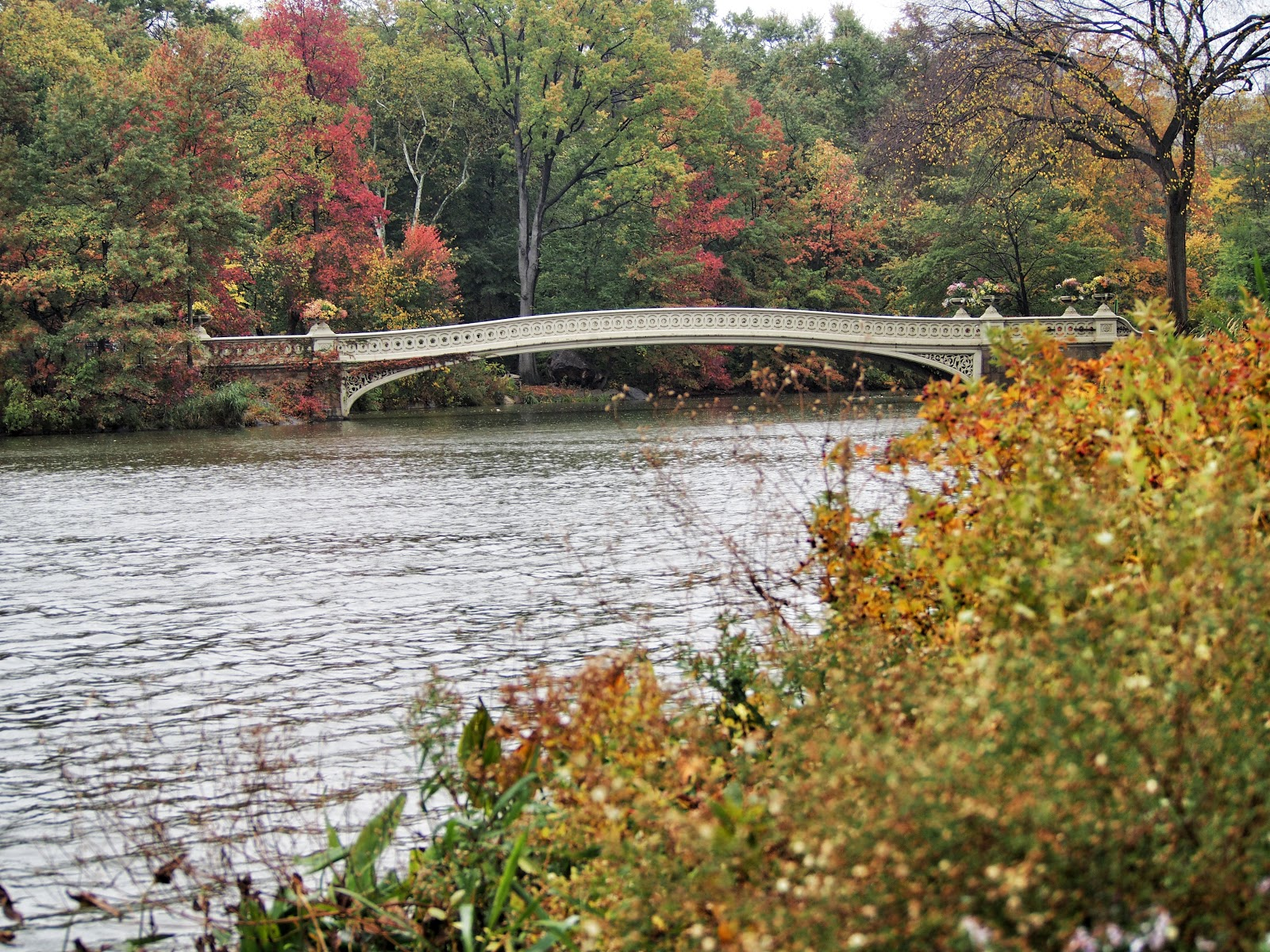 Bow Bridge, #emptybridge #bowbridge #centralpark #nyc #fall #fallfoliage #rainyday 2014