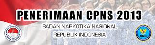 CNPS BNN 2013