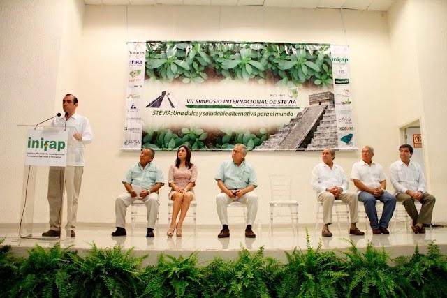 Se inaugura el VII Simposio Internacional de Stevia en Yucatán