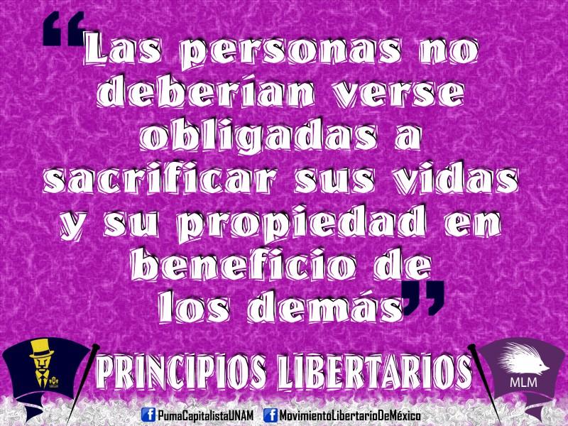 PARTIDO CAPITALISTA LIBERTARIO,  votarias por el? Principios+libertarios+4