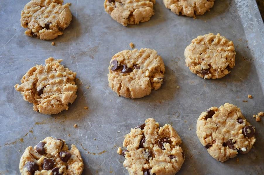 Gluten-Free-Peanut-Butter-Oatmeal-Chocolate-Chip-Cookies-Bake.jpg