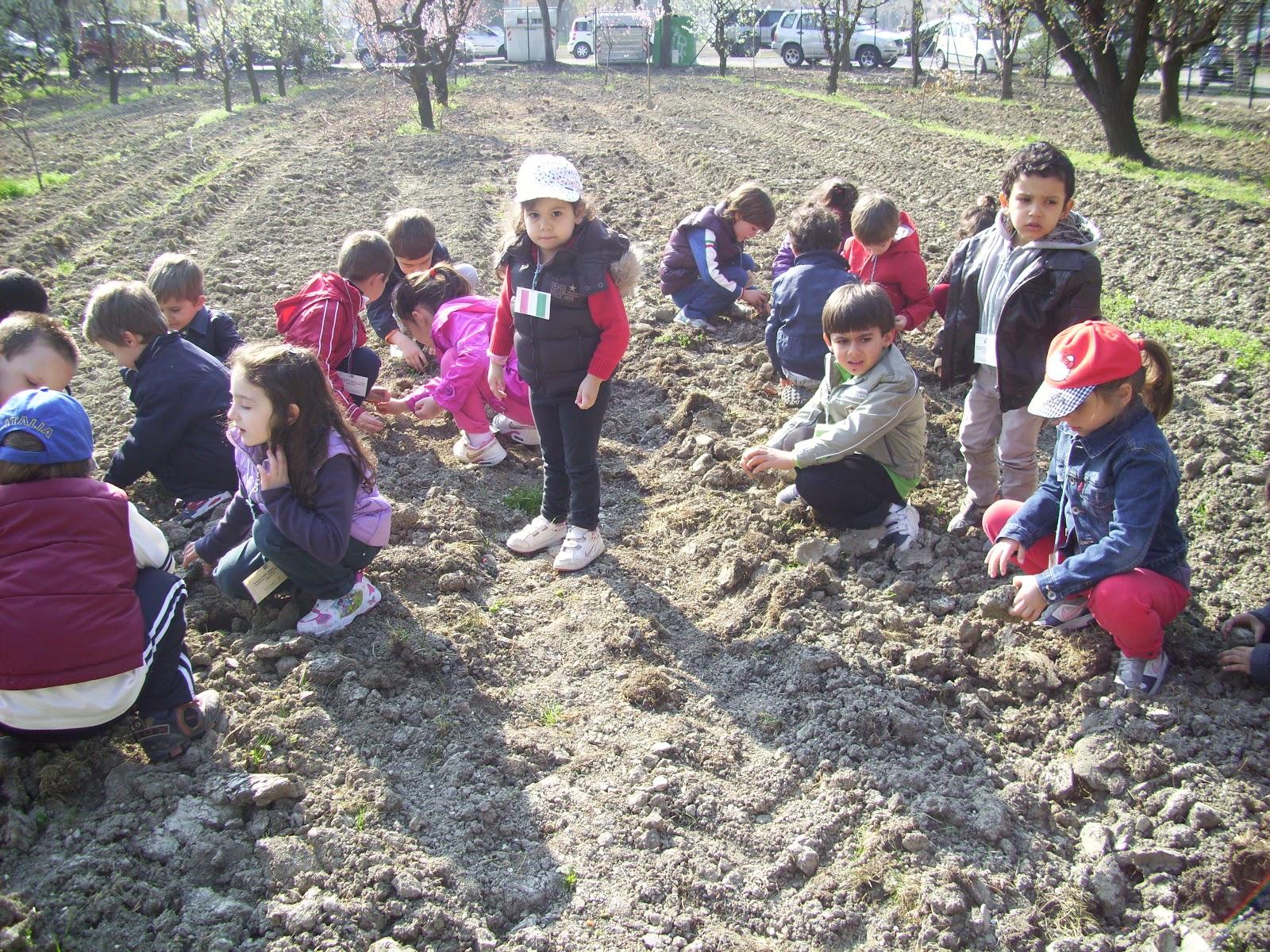 scuola gallini voghera lombardy - photo#5