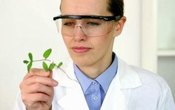 Bio Chemist