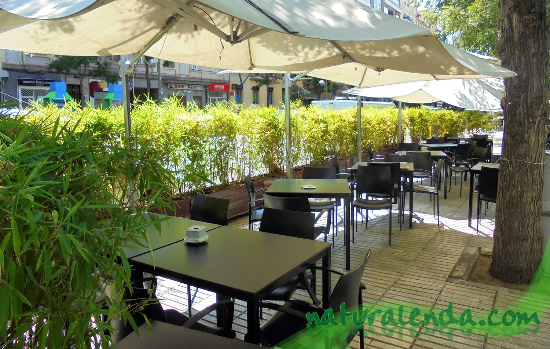 La naturaleza en casa terrazas de verano - Plantas terraza ...