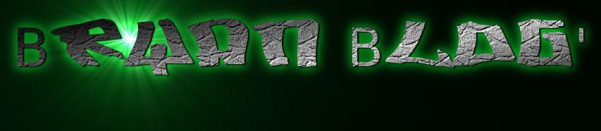 Bryan Blog'