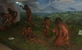 Sejarah Kehidupan Manusia