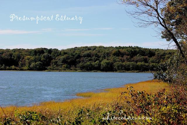 Presumpscot Estuary Maine