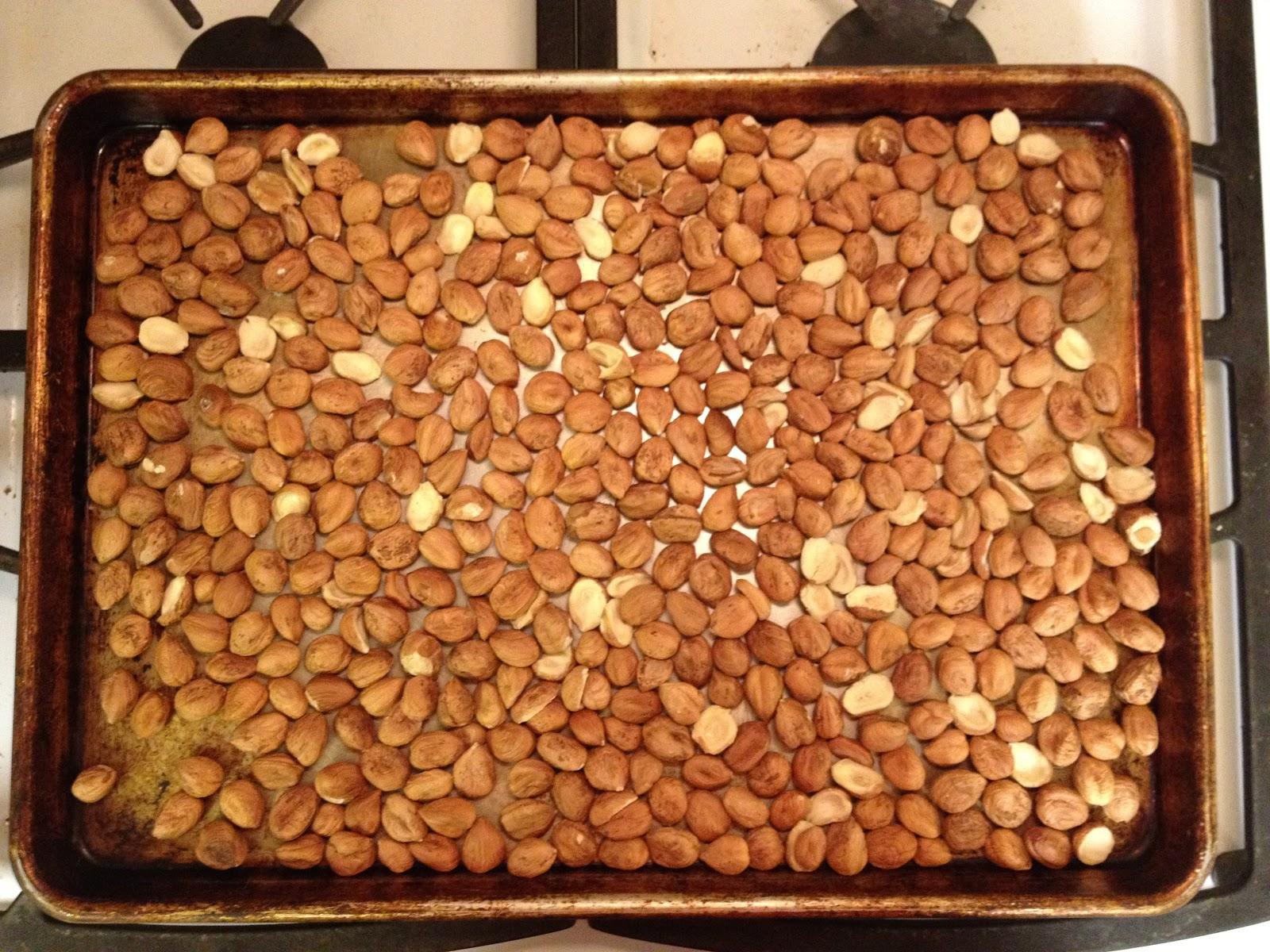 how to prepare raw hazelnuts