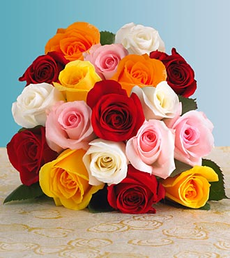 Mh studio rose mh studio fort abbas for Different color roses bouquet