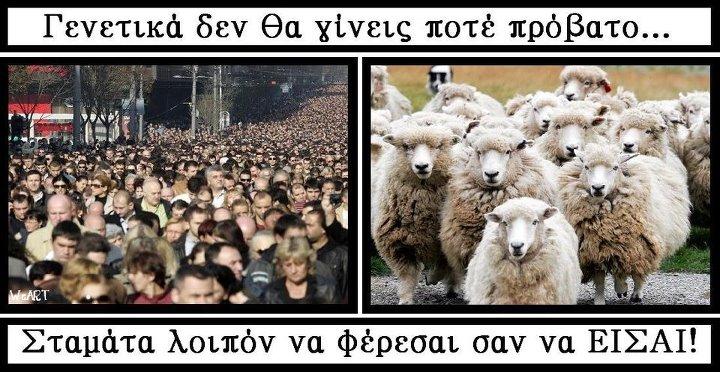 Άτομα που υπερασπίζονται με λύσσα και φανατισμό την ίδια τους την υποδούλωση!!!
