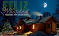 Cabaña en Invierno con mensaje 2015