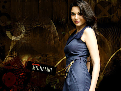 Mrinalini Sharma wallpaper
