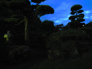 Japanese castle gardens at night