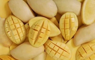 أسباب تجعلك تأكل المانجو يوميا, فاكهة المانجو, أهمية المانجو, ما هى فوائد المانجو, المانجو وانقاص الوزن, المانجو والجهاز الهضمى, المانجو ضد السرطان, المانجو والمناعة,