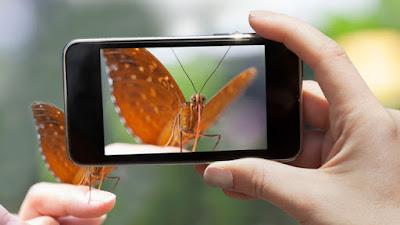 6 Tips Mengambil Foto Hasil Bagus Dengan Kamera HP