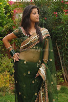 Madhurima, photos, in, transparent, saree