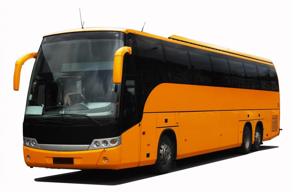 Yellow Coach Buses