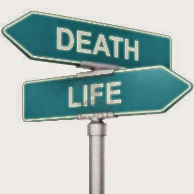 life after death experience essay The quote above comes from a 48-year-old woman who, on one occasion, almost died from complications related to a spinal tumor it evokes much of the general emotion associated with a classic near-death experience story the term near-death experience (nde) is well-known throughout america, but.
